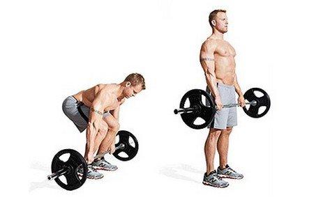 Упражнения влияющие на тестостерон