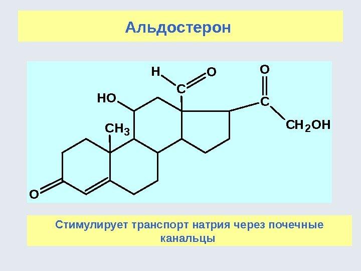 альдостерон гормон