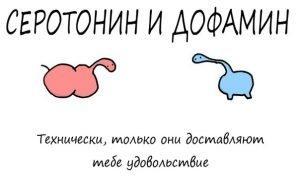 серотонин и дофамин