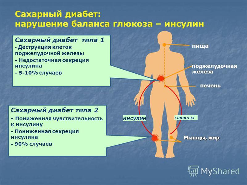 Глюкоза в анализе крови что это такое
