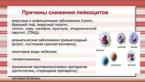 Общий анализ крови лейкоциты 21